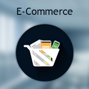 E-Commerce Website Designing Company Mumbai